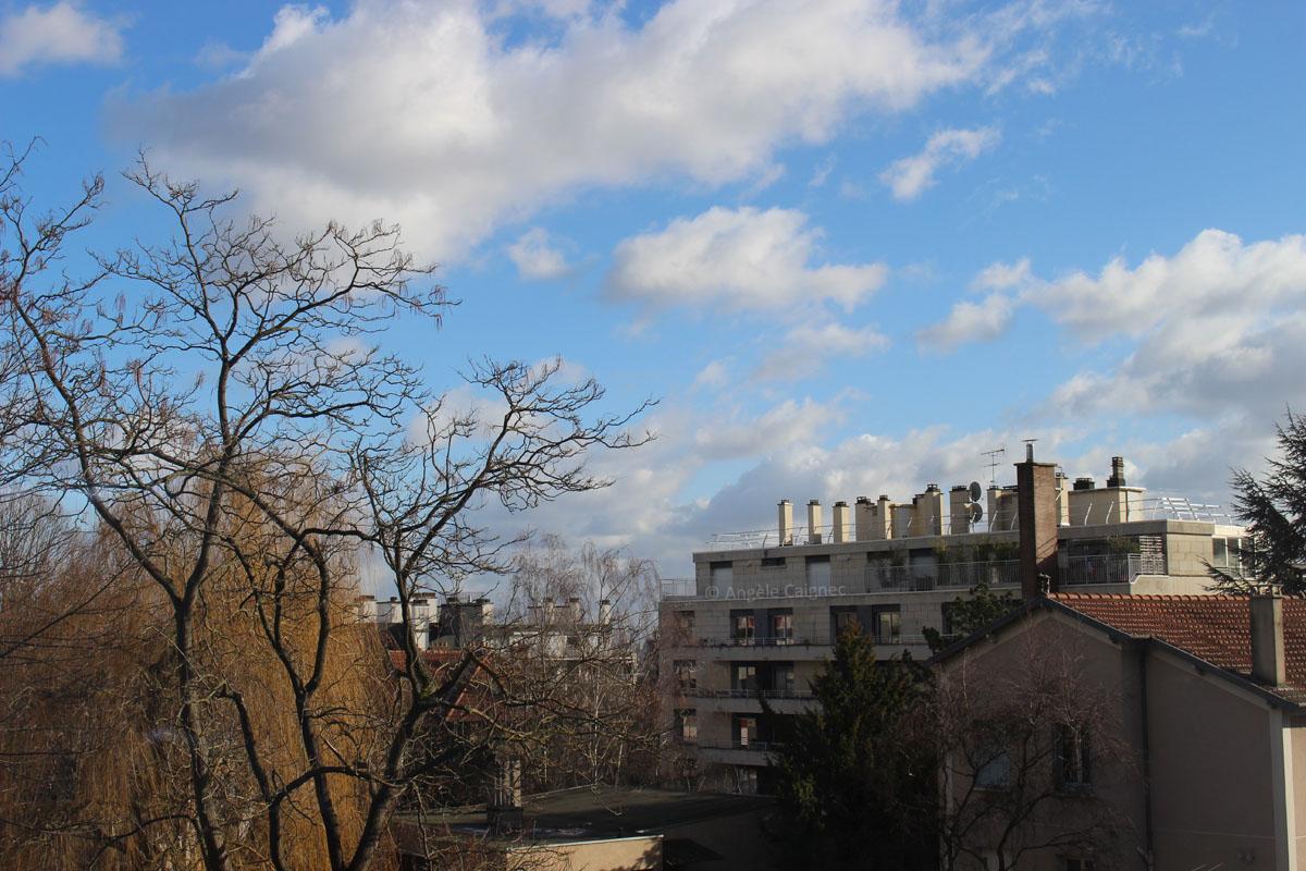Ciel de pleine journée ensoleillée orienté est, ciel bleu et quelques nuages cotonneux