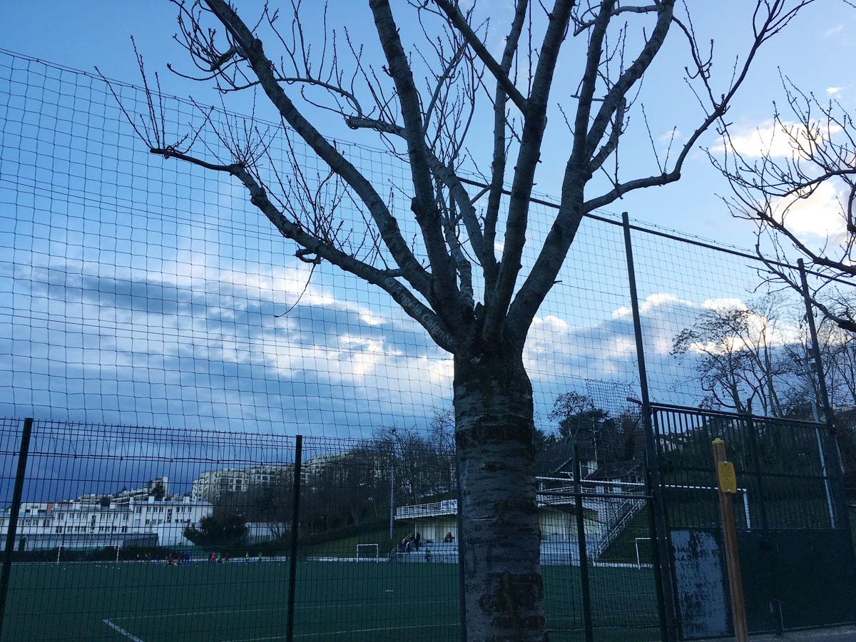 Fin de soirée au square près des terrains de sports extérieurs de Saint-Cloud